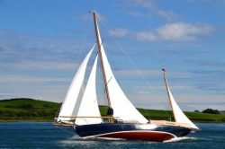 <p><strong>Ainmara</strong></p><p>Designer: JB Kearney <br />Builder: JB Kearney <br />Launched: 1912<br />Class: One off</p>